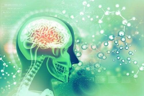 Foliumzuur kan de gemoedstoestand verbeteren