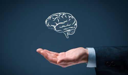Ken jij deze zes regels van eenvoudige intelligentie?