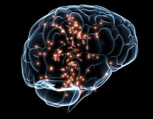 Neuronale activiteit in de hersenen