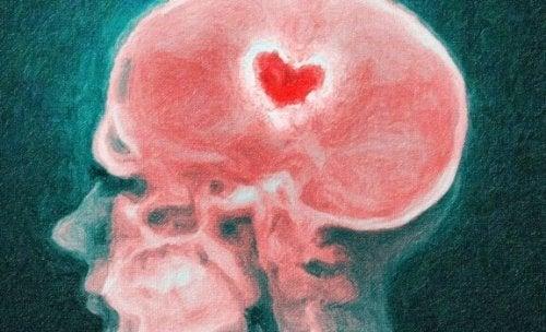 Wat gebeurt er in de hersenen bij een relatiebreuk?