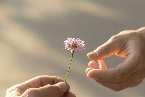 Man geeft bloemetje aan een ander