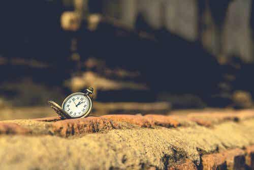 10 buitengewone Orhan Pamuk-citaten