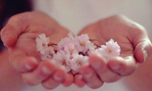 Bloemen in iemands hand