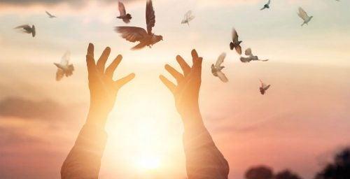 Man laat vogels vrij
