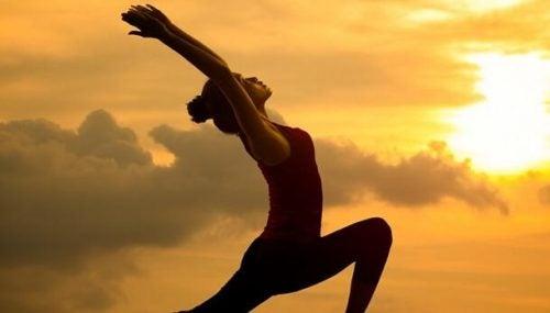 Seitai: de cultuur van harmonie en gezondheid