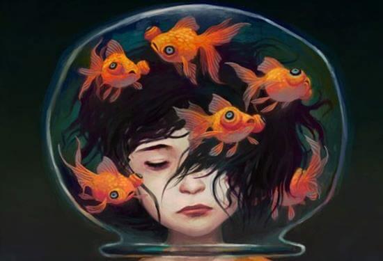 Vissen in een kom