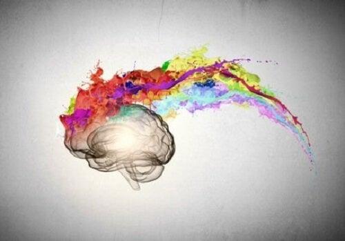 De hersenen van een optimist