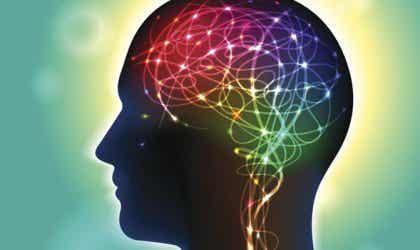 Anandamide: neurotransmitter die het geluk beïnvloedt