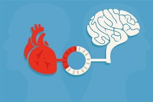 Rede en emotie: een balans die goede beslissingen oplevert