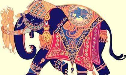 De olifant die zijn trouwring verloor: een prachtig verhaal