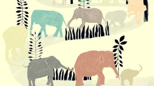 Een kudde olifanten