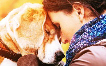 Waarom we soms zoveel van een dier gaan houden