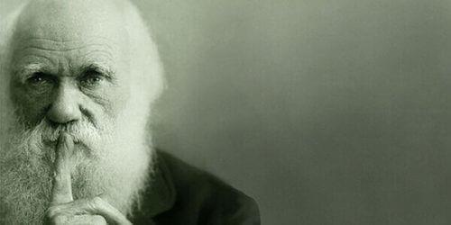 De evolutietheorie van Charles Darwin