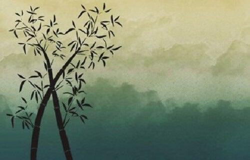 Wees net als bamboe: geduldig, sterk en buigzaam