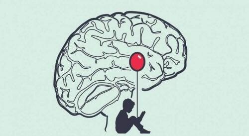 de amygdala en angst