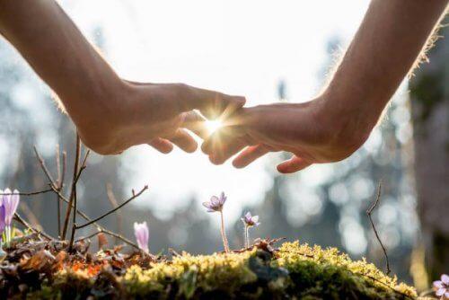 Twee handen die elkaar aanraken boven mos en wilde bloemen