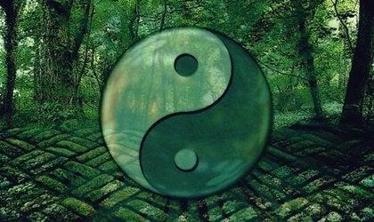 Citaten Over Vrede : Lao tse citaten om je te helpen evolueren u verken je geest