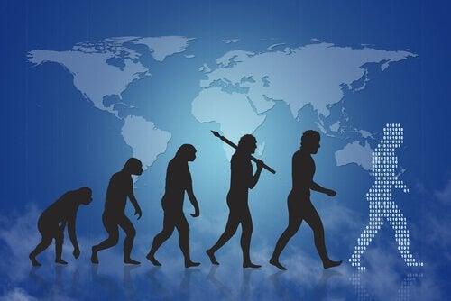 De evolutie van de menselijke hersenen