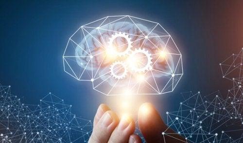 De theorie van de machiavellistische intelligentie
