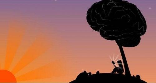 Intelligentie en wijsheid