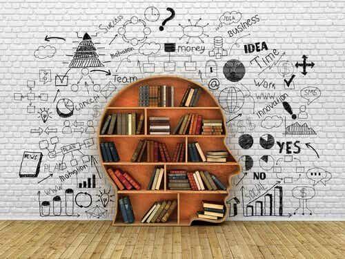 Bibliotherapie: de helende kracht van boeken
