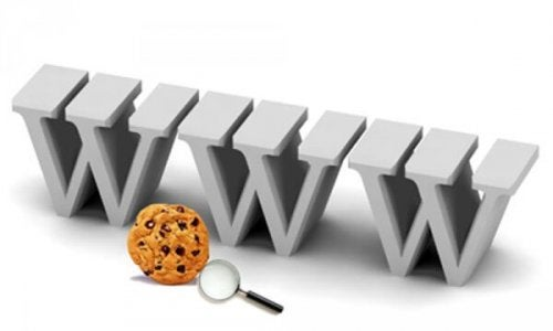 Het world wide web
