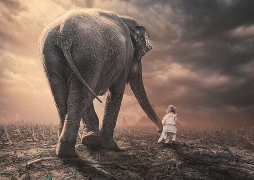 Klein meisje met olifant