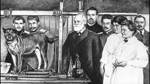 Experiment van Ivan Pavlov
