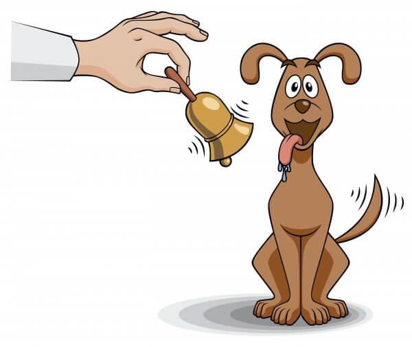 Tekening van een hond met een bel