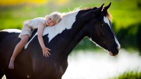 Paardentherapie kind op een paard