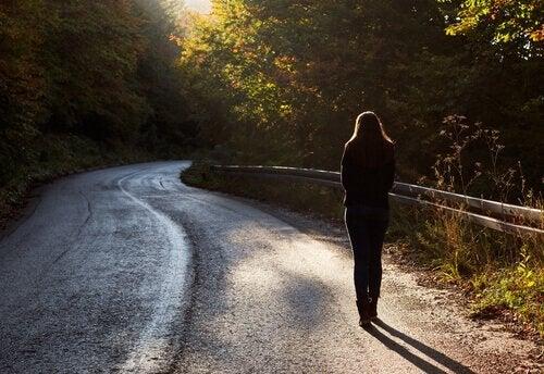 Wandeling langs de weg