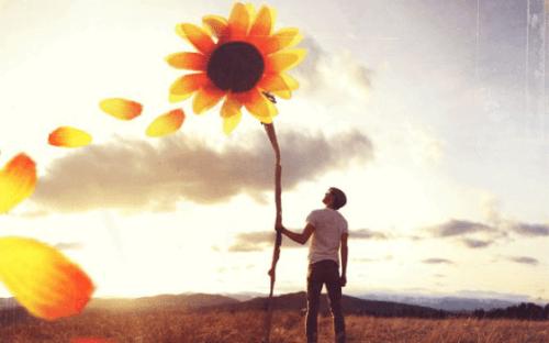 Man naast hele grote zonnebloem