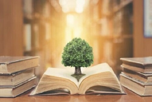 Fictieboeken veranderen je perspectief