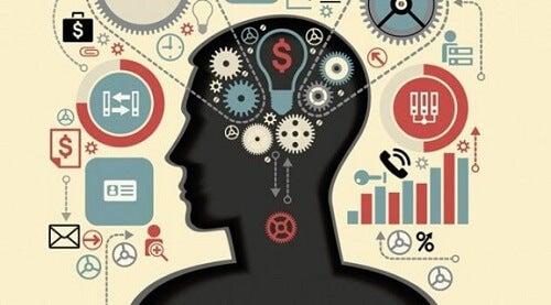 Uitvoerende functies: de geestelijke vermogens van de hersenen