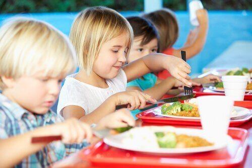 De gezonde maaltijden van schoolkantines