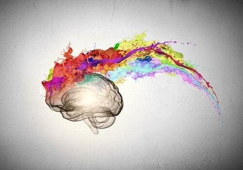 Hersen met gekleurde verf