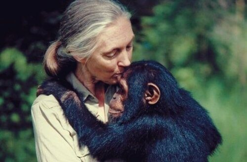 Vijf citaten van Jane Goodall om over na te denken