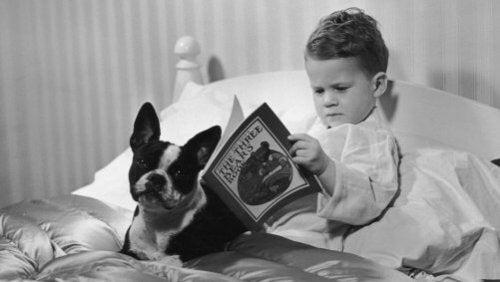 Jongetje leest boek in bed met hond