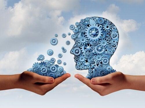 Wat is het belang van een onderwijspsycholoog?
