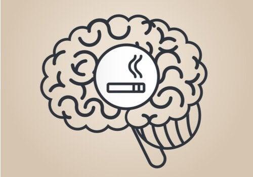 Wat is het effect van nicotine op de hersenen?