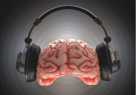 Hersenen met koptelefoon