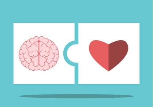 De theorie van Salovey en Mayer over emotionele intelligentie