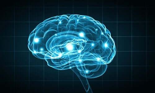 Hersenen met verschillende lichtpuntjes
