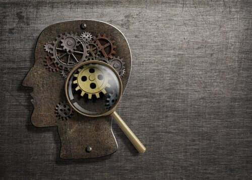 De hersenen als mechanisme