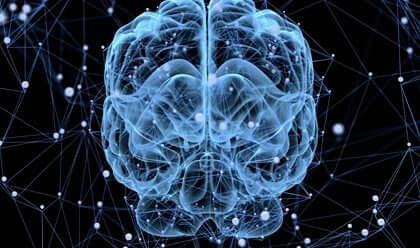 Slapen de hersenen eigenlijk ook?