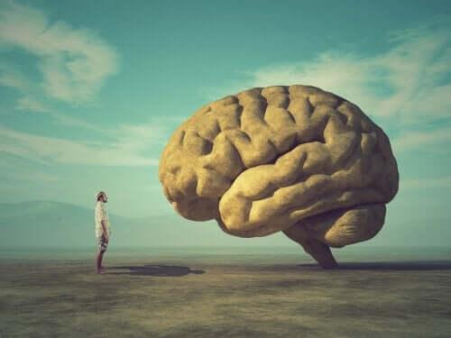 Man kijkt naar reusachtige hersenen