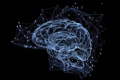 Verbindingen in de hersenen