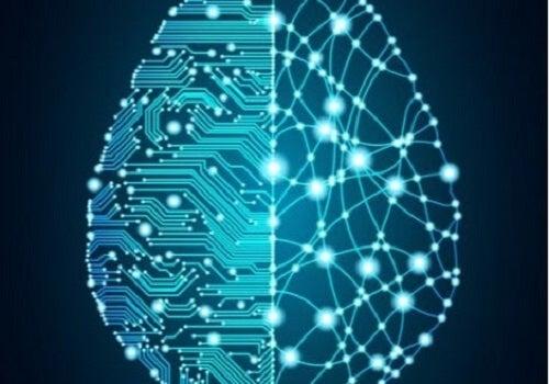 De geschiedenis van het project Blauwe Hersenen