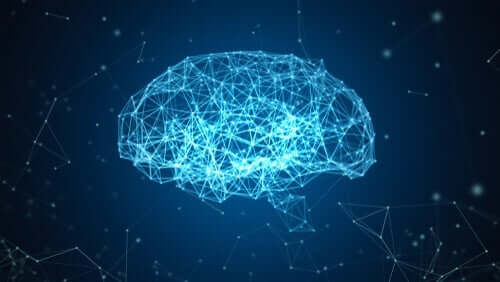Blauwe Hersenen: een reconstructie van de hersenen