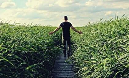 Een man loopt door een pad in het gras